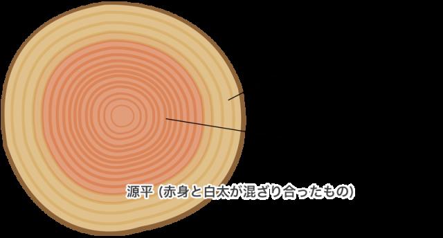 木材の説明:赤身(芯材)・白太(辺材)・源平