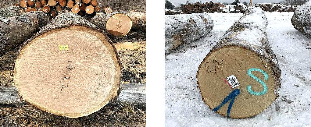 良質木材のメリット